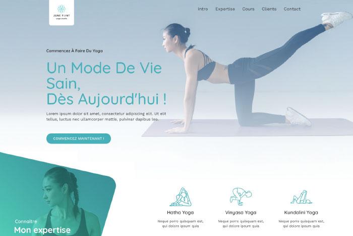 site internet vitrine mistral agency
